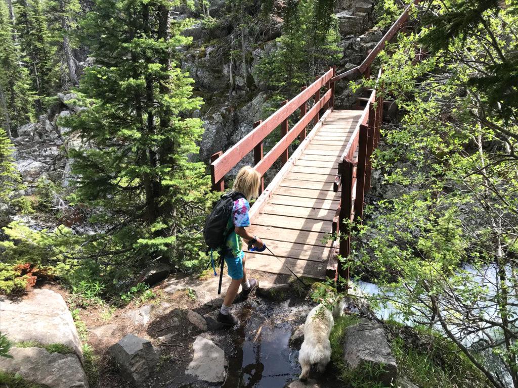 Footbridge clarks fork river exploration adventure